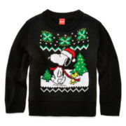 Snoopy Holiday Sweater - Toddler Boys 2t-5t