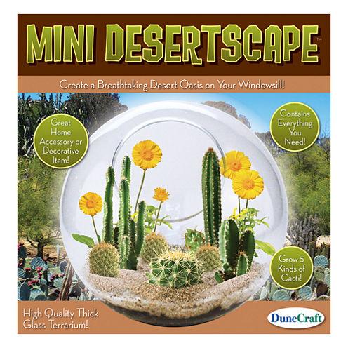 Dunecraft Glass Terrarium - Mini Desertscape