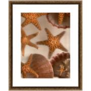 PTM Images™ Underwater II Wall Art