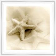 PTM Images™ Sea Shells I Wall Art