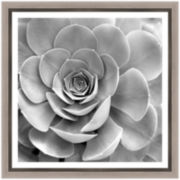PTM Images™ Plant I Wall Art