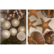 PTM Images™ Set of 2 Underwater Canvas Wall Art