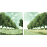 PTM Images™ Set of 2 Green Nature Wall Art