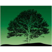 PTM Images™ Green Tree I Canvas Wall Art