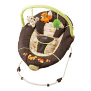 Summer Infant® Sweet Comfort Musical Bouncer - Fox & Friends