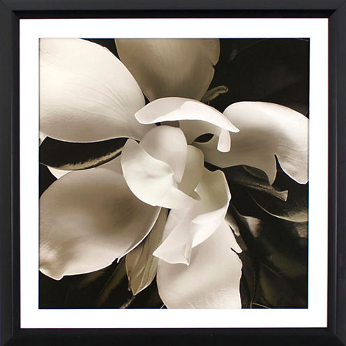 Decor Therapy The Unfolding in Black Steel Frame