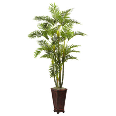 jcpenney.com | 6.5' Areca With Decorative Planter