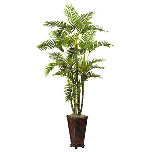 6.5' Areca With Decorative Planter