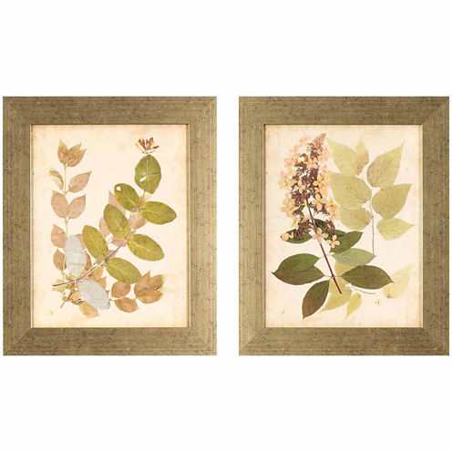 Decor Therapy 2Pc Natures Collage Framed Art Set