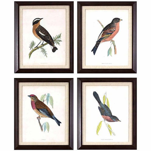 Decor Therapy Antique Bird Studies Wall Decor
