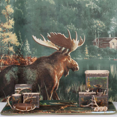 jcpenney.com | Back Bay Moose Bath Collection