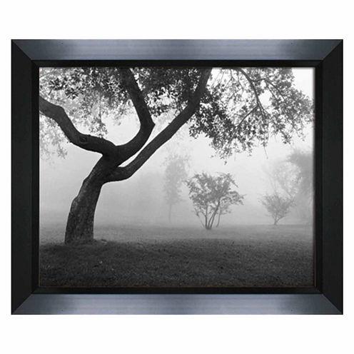 Into The Mist Framed Art