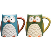 Owl Set of 2 Mugs