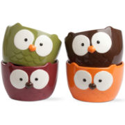 Owl Set of 4 Bowls