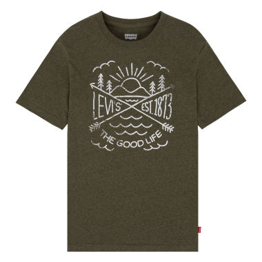 jcpenney.com | Levi's Boys Graphic T-Shirt-Big Kid