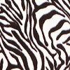 Zebra Pale Ecru