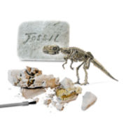 Protocol® Dinosaur Fossil Kit