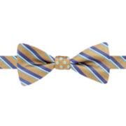 Stafford® Pacific Stripe Dot Reversible Pre-Tied Bow Tie