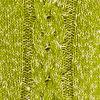 Green Marled