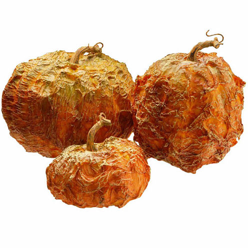 National Tree Co. Pumpkin 3-pc. Tabletop Decor