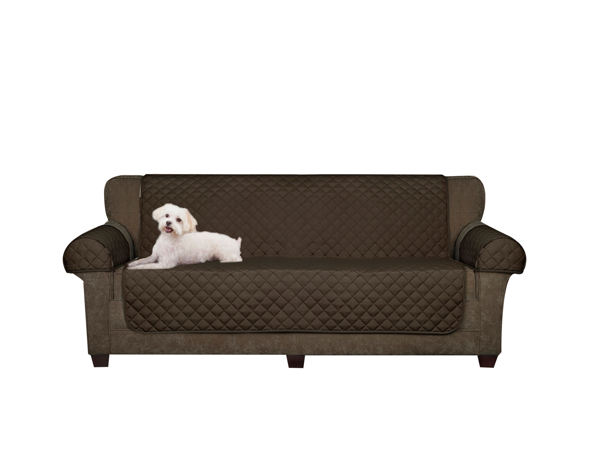 Extra Sofa Pet Covers Search