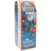 Styrofoam Molecule Kit