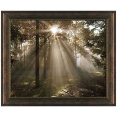 jcpenney.com | A New Day Framed Wall Art