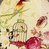 Gld Bird