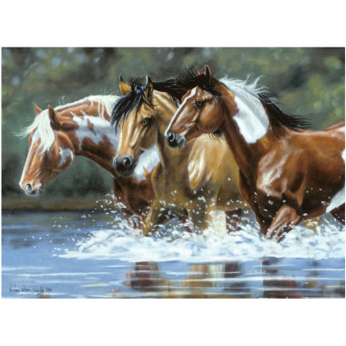 "jcpenney.com | 12x16"" Heading Upstream Paint By Number Collection"