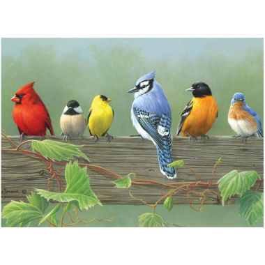 "jcpenney.com | Paint By Number Artist's Collection 12 X 16""- Rail Birds"
