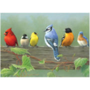 "Paint By Number Artist's Collection 12 X 16""- Rail Birds"