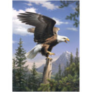 "Paint By Number Artist's Collection 9""X12""- Screaming Eagle"