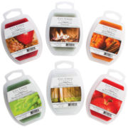 Candle Warmers™ Set of 6 Wax Melts – Fall Scents