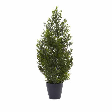 jcpenney.com | 2' Mini Cedar Christmas Tree