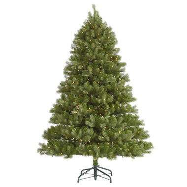jcpenney.com | 6.5' Pre-Lit Belvedere Spruce Artificial ChristmasTree with Clear LED Lights