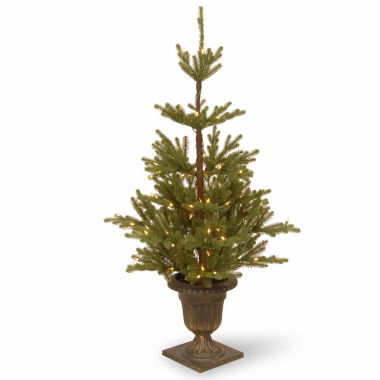 jcpenney.com | National Tree Co. 4 1/2 Foot Imperial Spruce Entrance Pre-Lit Christmas Tree