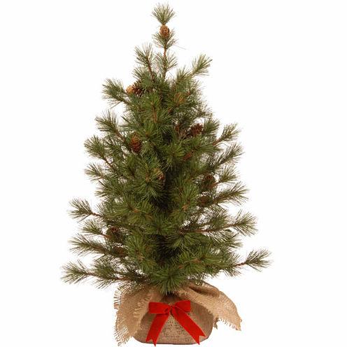 National Tree Co. 3 Foot Bristle Cone Christmas Tree