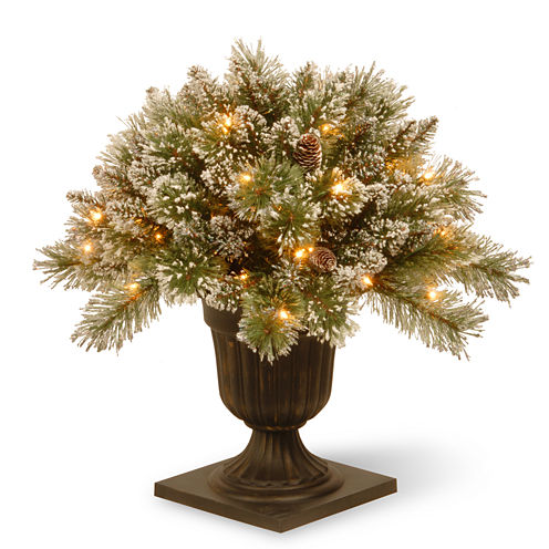 National Tree Co. Glitterly Bristle Pine Porch Pre-Lit Christmas Tree