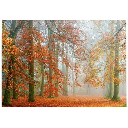 Autumn With Blue Sky Canvas Wall Art