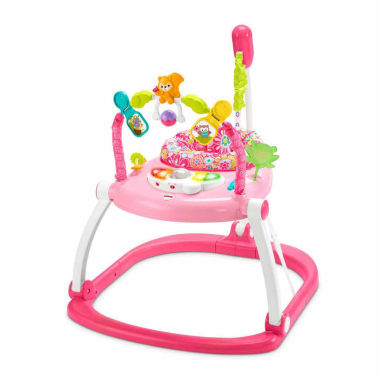jcpenney.com | Fisher Price Floral Confetti Spacesaver Jumperoo