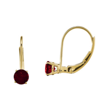 jcpenney.com | Genuine Red Garnet 14K Yellow Gold Drop Earrings