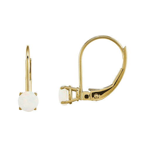 Lab-Created Opal 14K Yellow Gold Drop Earrings