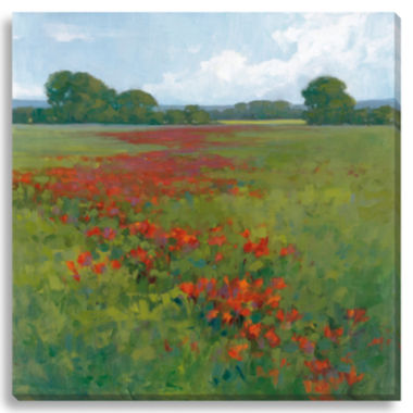 jcpenney.com | Red Poppies II Canvas Wall Art
