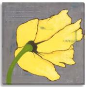 Yellow Poppies I Canvas Wall Art