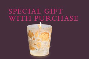 SPECIAL GIFT WITH PURCHASE
