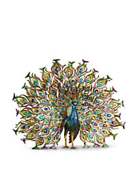 Stanton Fan Tail Peacock Figurine - Peacock
