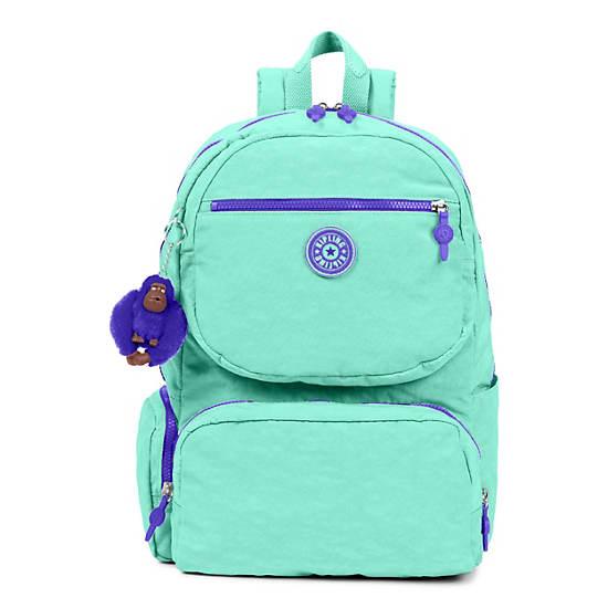Dawson Large Laptop Backpack,Fresh Teal,large