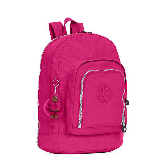 Hal Expandable Backpack,Very Berry,large