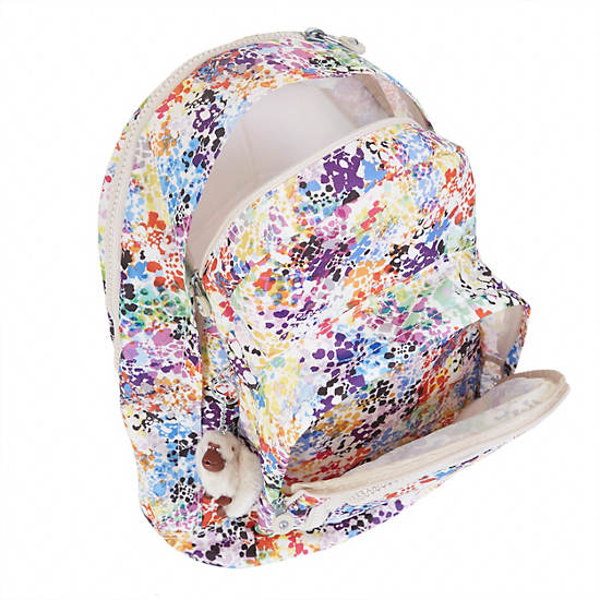 Hal Expandable Backpack,Colorburst,large