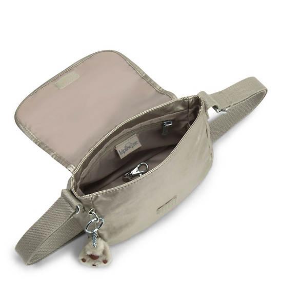 Sabian Metallic Mini Bag,Silver Beige,large